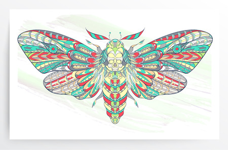 Deaths-head hawkmoth. Patterned moth on the grunge background. Ornate butterfly. Illustration