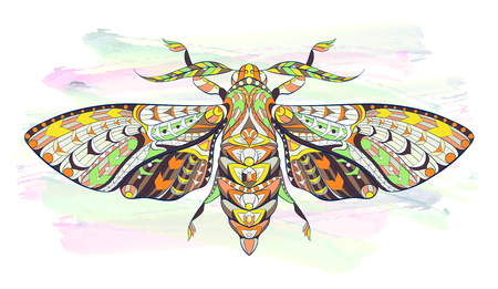 celtic background: Deaths-head hawkmoth. Patterned moth on the grunge background. Ornate butterfly. Papillon. Tattoo design. It may be used for design of a t-shirt, bag, postcard, a poster and so on.