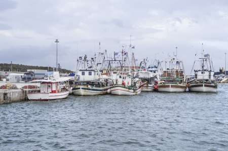 shrimp boat: fishing boats in a harbor, under cloudy sky