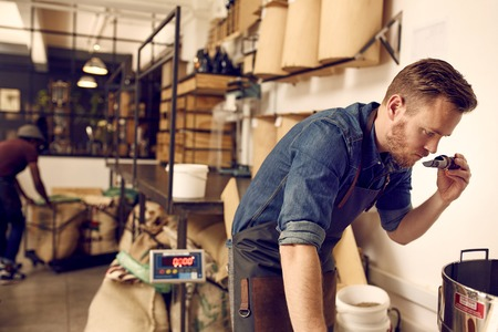 local: Male business owner in a modern and clean coffee roastery, taking time to check for quality by smelling the aroma of some freshly roasted coffee beans