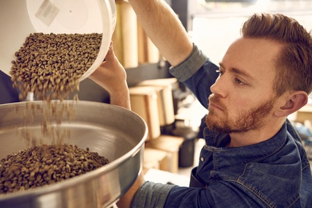 Owner of a coffee bean roastery, pouring a new batch of raw coffee beans from a plastic container into the metal part of a modern roasting machine
