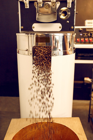 grano de cafe: Moderna máquina de tostar granos de café recién tostado distribución de granos en un recipiente