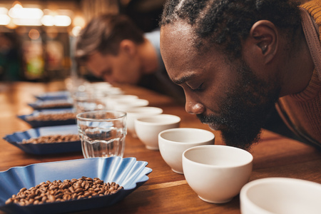 Cropped shot of a two men smelling the aroma of freshly ground coffee at a tasting session, leaning over a wooden counter set with neat rows of cups, glasses and containers of roasted coffee beans
