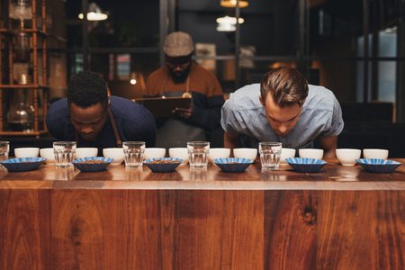 aromas: Baristas smelling the different aromas of a variety of coffee beans in a modern roastery with a manager taking notes on the training and tasting