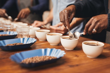 Cropped image of the hands of professional baristas at a wooden table with many cups, training to make the perfect cup of coffee with a variety of roasted coffee beans