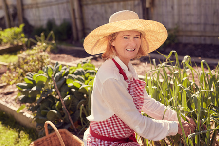 urban gardening: Portrait of a healthy senior woman smiling up at the camera while checking on plants in her vegetable garden
