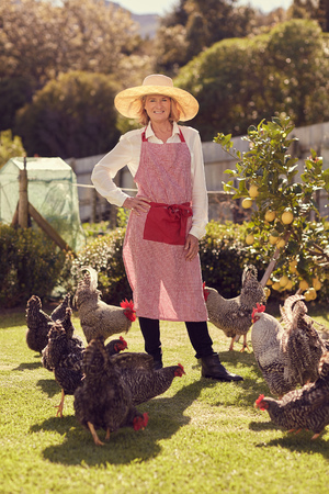 peck: Smiling senior woman standing with her hand on her hip in a proud manner, smiling at the camera while a group of healthy looking free range chickens peck at the grass at her feet