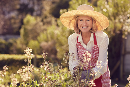 woman gardening: Portrait of a senior woman smiling at the camera while bending over a rocket plant with flowers, while wearing a straw hat and apron in her garden on a sunny morning Stock Photo