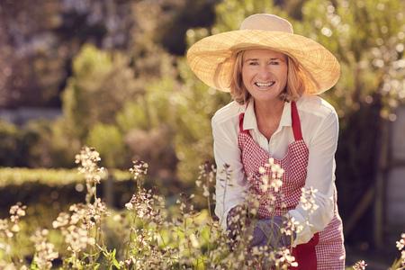 Ritratto di una donna senior sorridente verso la macchina mentre china su un impianto a razzo con fiori, mentre indossa un cappello di paglia e un grembiule nel suo giardino in una mattina di sole