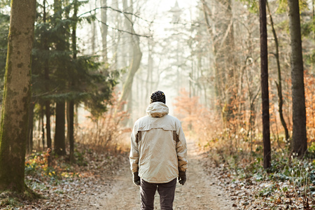 individual: Rearview of a man in warm clothing standing in a forest, on a winter day looking at a path with gentle sunlight shining on the road Stock Photo