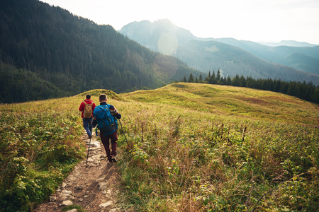 Two hikers walking down a trail in the wilderness Banco de Imagens