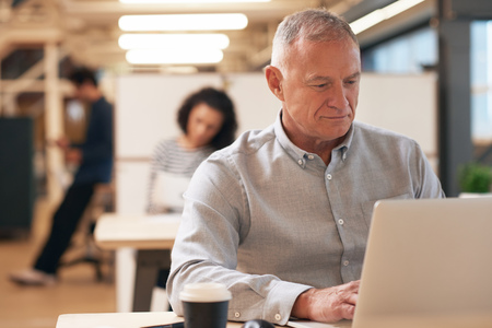 experienced: Mature businessman focused on work in an office Stock Photo