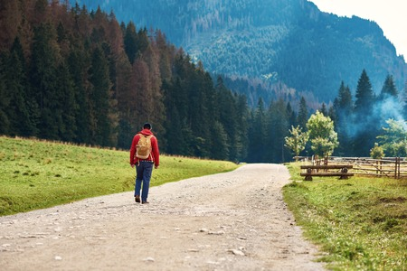 Hiker walking along road to a forest