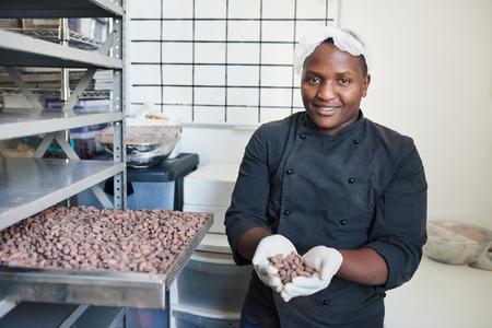 Smiling worker selecting cocoa beans from a factory tray Stockfoto