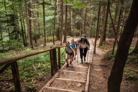 Diverse people hiking up trail stairs in a forest