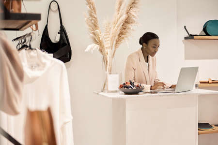 African American female entrepreneur using a laptop in her boutique