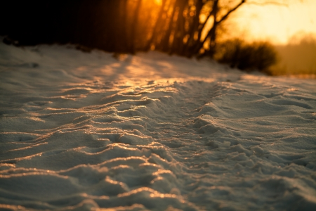 Winter trail at sunset covered by snow  Bright sun breaks through the trees in the background  Ukraine, Carpathian, Ivano-Frankivsk