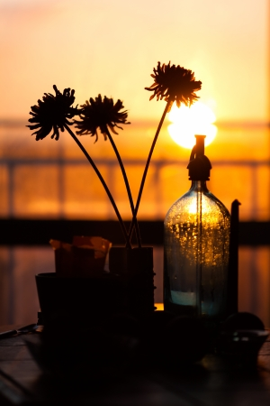 three flowers and bottle at sunset  Home Still Life