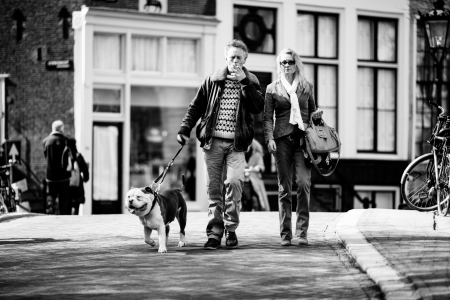 couple walking with a dog on the streets of Amsterdam. Black and white. Netherlands