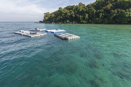 phillip rubino: Empty swim platform floating on a lake