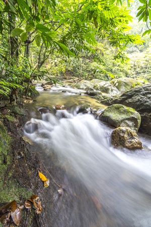 flew: Natural flow of water stream at tropical forest