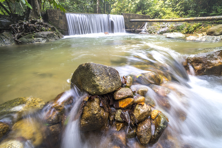 flew: Water stream with waterfall background at tropical forest