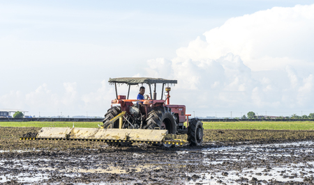 technologically: SELANGOR, MALAYSIA - JANUARY 31, 2016: Worker uses a machine to tilling the soil for planting rice on paddy field in Sekinchan, Malaysia. Sekinchan is one of the major rice supplier in Malaysia.