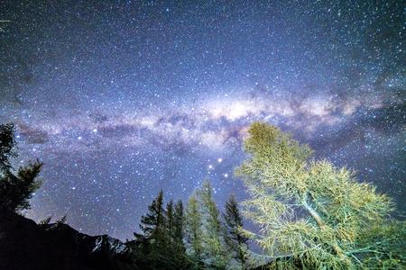 campsite: Milky way from glentanner campsite, New Zealand.