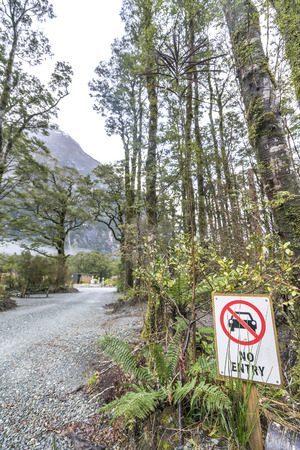 disallowed: No entry sign with the forest background