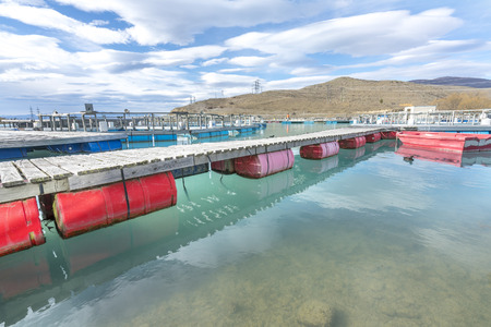 Salmon Fish farm floating on the glacial waters of Wairepo Arm, Twizel, South Island, New Zealand