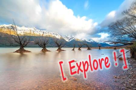 The Famous Willow Trees of Glenorchy, New Zealand