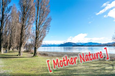 dode bladeren: Mening van jogging spoor na wintertijd bij wanakameer, Nieuw Zeeland