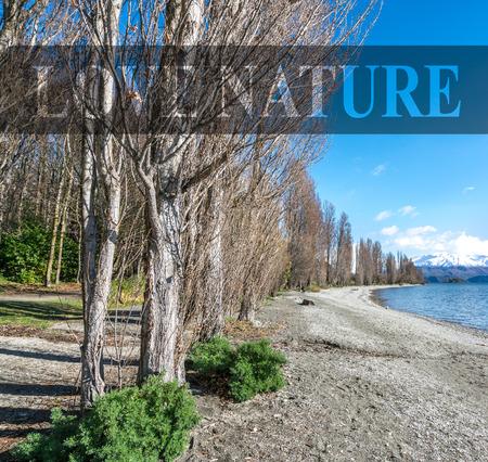 View of jogging track after winter season with nature morning sunlight at wanaka lake, New Zealand