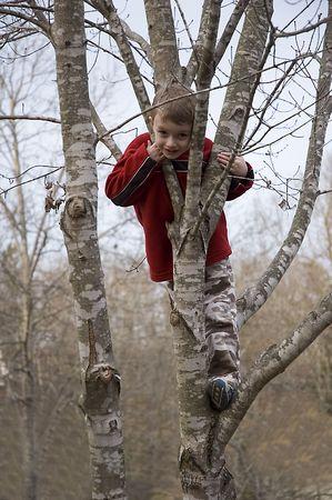 chłopięctwo: Mały Chłopiec Tree Climbing Zdjęcie Seryjne