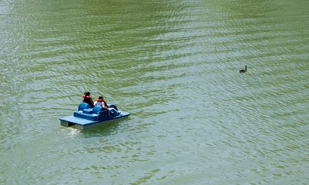 Two people in paddleboat following goose