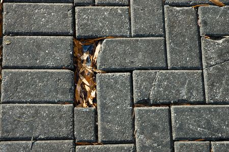 Closeup of cobble stone sidewalk with one brick missing and frozen leaves in the hole