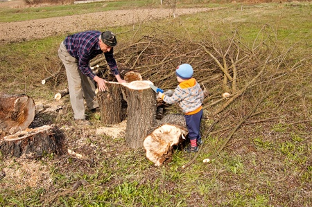Grandfather with grandson by felling trees felled photo