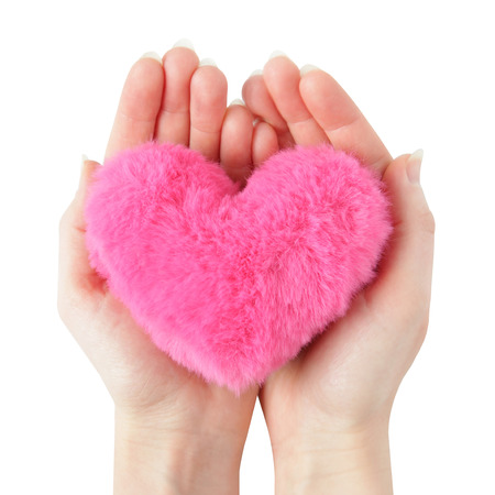 Shaggy pink heart on woman hands isolated on white