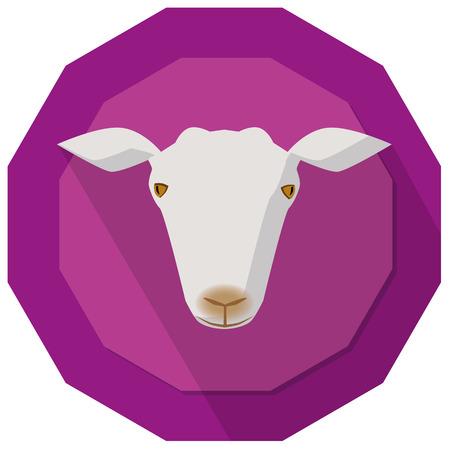 goat head: Simple illustration of goat head on purple background