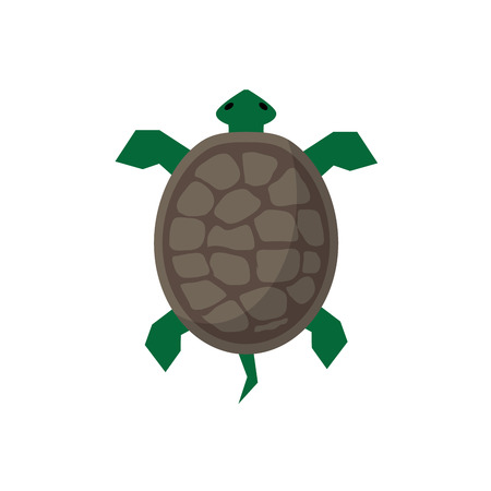 sea turtle illustration  in flat style with shadow