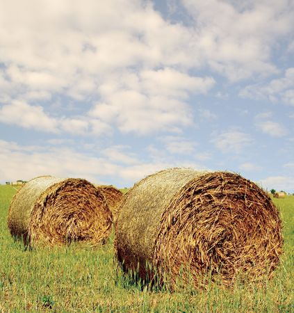 Straw hay bales Stock Photo - 2326695