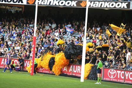 regel: Melbourne Australië 23 april, 2008. De AFL voet bal Richmond tijgers toejuichen ploeg in het Dome.  Redactioneel