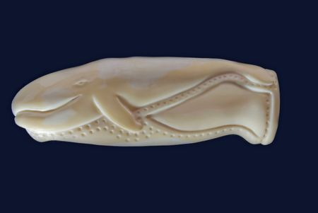 fang: The carved Eskimo handle for a knife from walrus fang.
