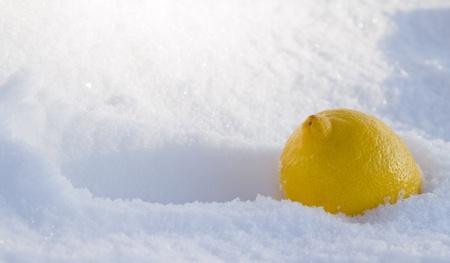 Lemon In snow  Stock Photo