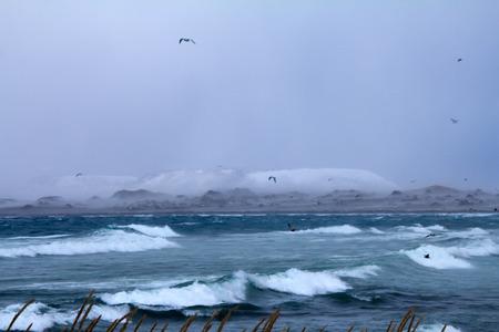 winter storm on an ocean coast
