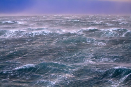 storm on  Kara Sea summer photo