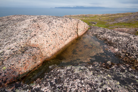 interstice: reserve of fresh water in  opening of rock