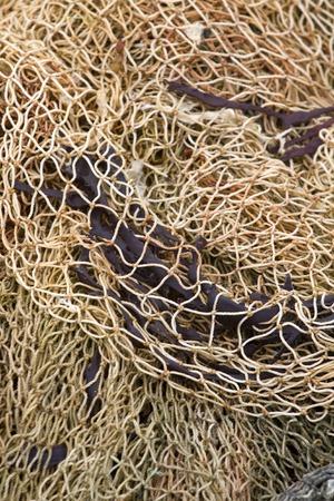 fishingnet: background of the sea  rope fishing net
