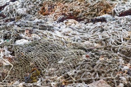 fishing net: background of the sea  rope fishing net