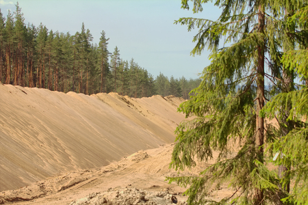 earth handful: construction of a new road in the woods in the summer